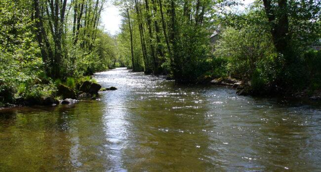 Rivières et milieux aquatiques